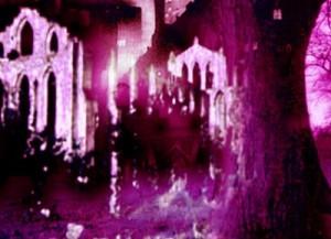 abbeymani
