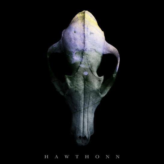 Hawthonn review