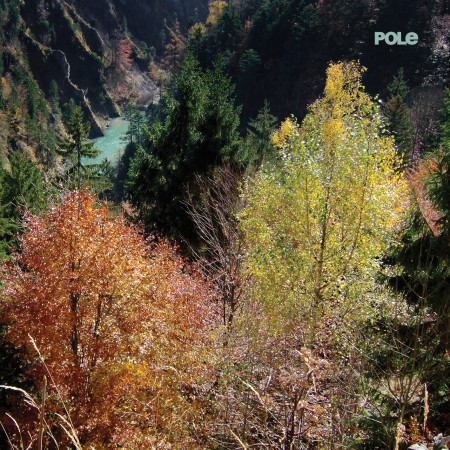 Pole Wald album review