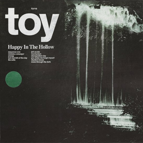 Toy 2019 music