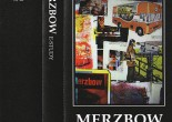 Merzbow E-Study album review